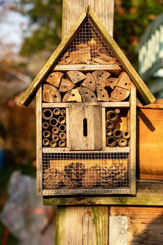Ett lite mer avancerat hotell för bin och andra insekter.