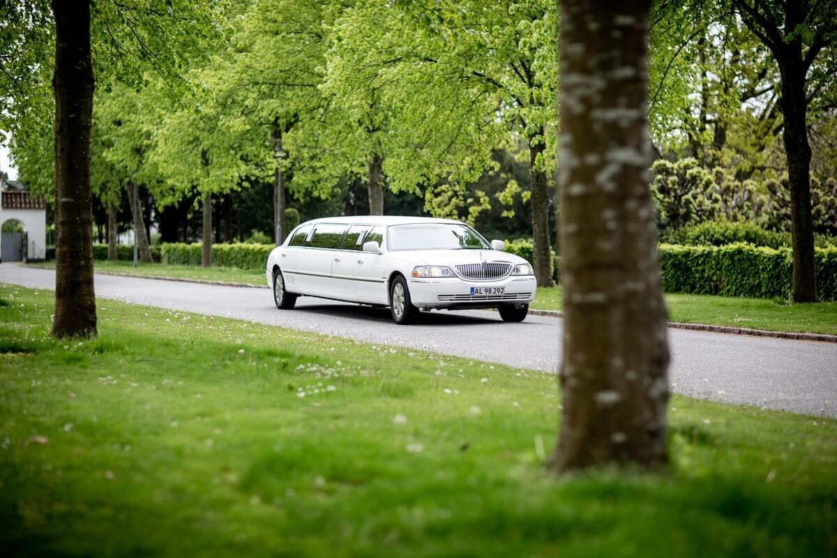 Vit limousine på sightseeing i naturen