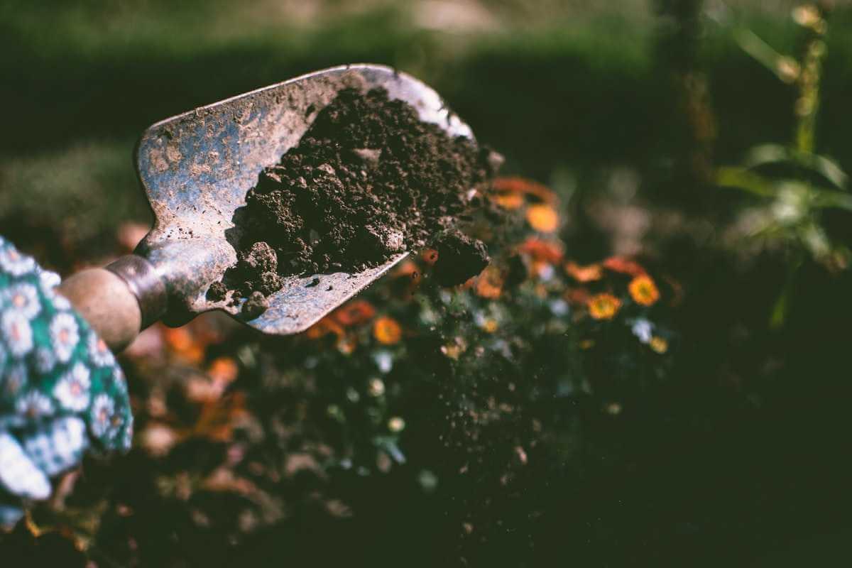 Finansiera trädgårdsprojekt - gräva jord med spade