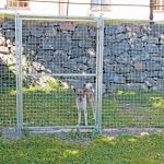 Dörrsektion till hundgård/hönsgård med ram/lås, 1800 x 1200 mm